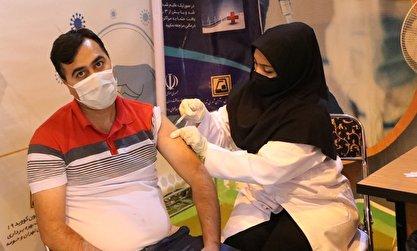 زالی: از 10.5 میلیون جمعیت بالای 18 سال استان تهران، 8.5 میلیون نفر واکسن کرونا زدهاند