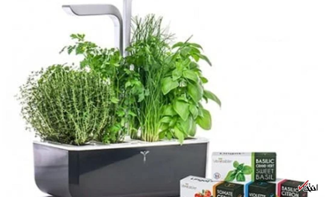 باغچه هوشمند با نور LED خودکار + تصاویر